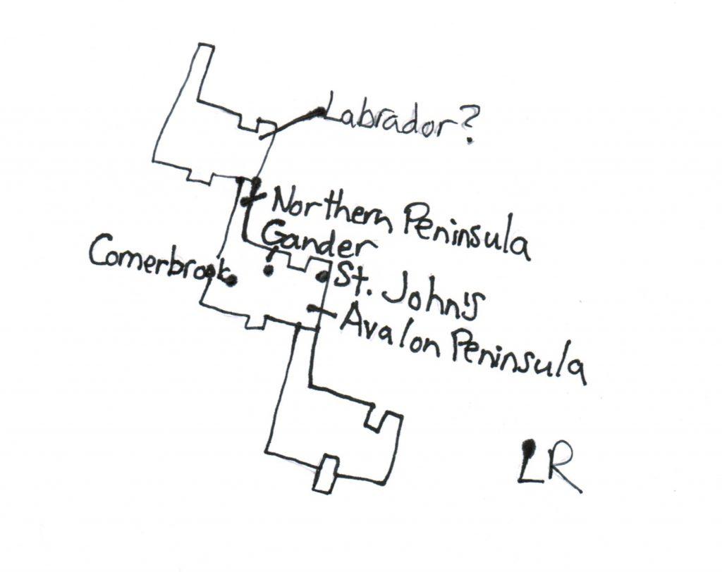 houndstoothnewfoundland-1